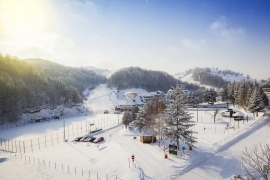 Hotel Junior 3* - Kopaonik